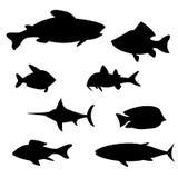 Illustrationvektor av olika sorter av fisken vektor illustrationer