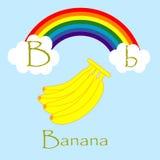 Illustrator of B alphabet. Font Stock Photos