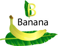Illustrator b font with banana Royalty Free Stock Photography