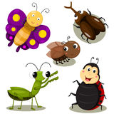 Illustrator of bug cartoon cute Royalty Free Stock Image