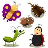 Illustrator of bug cartoon cute Royalty Free Stock Image