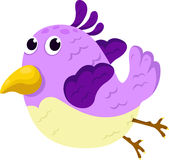 Illustrator of bird Stock Photography