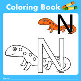 Illustrator of color book with newt animal. Isolated for education Stock Photography