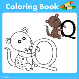 Illustrator of color book with quoll animal Stock Photography