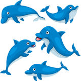 Illustrator of cute dolphin Stock Images