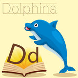 Illustrator of D for Dolphins vocabulary stock illustration