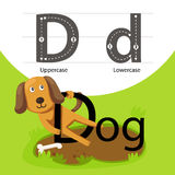 Illustrator with d font animal Stock Image