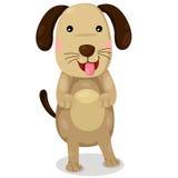 Illustrator of dog cute vector Stock Photos