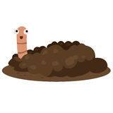 Illustrator of earthworm smile Royalty Free Stock Photo