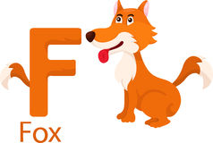 Illustrator of F with fox Stock Photo