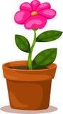 Illustrator of flower Stock Photography