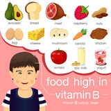 Illustrator of food high in vitamin B. For healthcare royalty free illustration