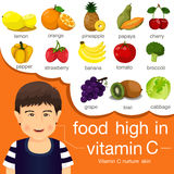 Illustrator of food high in vitamin c. For healthcard stock illustration
