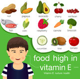 Illustrator of food high in vitamin e. For healthcard Royalty Free Stock Photo