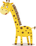 Illustrator of giraffe cartoon Royalty Free Stock Image
