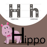 Illustrator of hippo with h font Royalty Free Stock Photo
