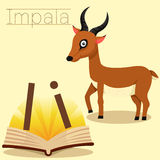 Illustrator of I for Impala vocabulary.  Royalty Free Stock Photography