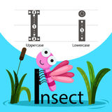 Illustrator of Insect with i font Stock Photos