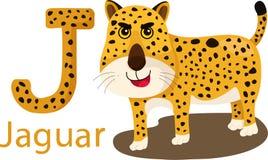 Illustrator of J with jaguar. Vector font J with jaguar stock illustration