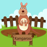 Illustrator of kangaroo in the zoo Stock Image