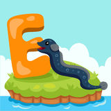 Illustrator of Letter 'E is for eel' Stock Photos