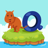 Illustrator of Letter'Q is for Quokka' Royalty Free Stock Photos
