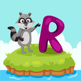 Illustrator of Letter'R is for Raccoon'. Cartoon cute and education Stock Photography