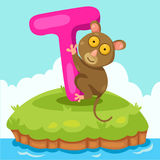 Illustrator of Letter 'T is for tarsier'. Cute and education royalty free illustration