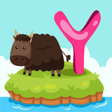Illustrator of Letter 'Y is for Yak' Royalty Free Stock Photography