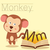 Illustrator of M for Monkey vocabulary Stock Images