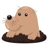 Illustrator of Mole cartoon Royalty Free Stock Photos