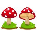 Illustrator of mushrooms Stock Images