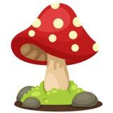 Illustrator of mushrooms landscape Stock Images