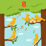 Illustrator of number eight birds Royalty Free Stock Photo