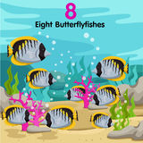 Illustrator of number with eight butterflyfishes Royalty Free Stock Photos