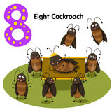 Illustrator of number eight cockroach Royalty Free Stock Photo