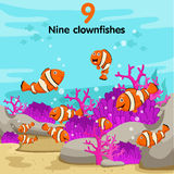 Illustrator of number with nine clown fish. On the sea Stock Images