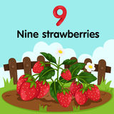 Illustrator of number nine strawberries Royalty Free Stock Photos