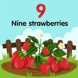 Illustrator of number nine strawberries Royalty Free Stock Photos