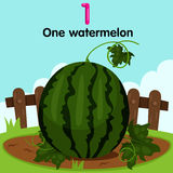 Illustrator of number one watermelon Royalty Free Stock Photos