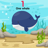 Illustrator of number with one whale Royalty Free Stock Photo