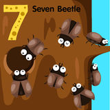 Illustrator of number seven beetle Royalty Free Stock Photography