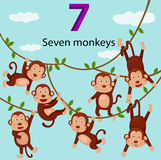 Illustrator of number seven monkeys Royalty Free Stock Photos