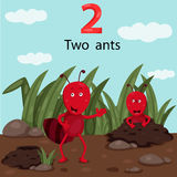 Illustrator of number two ants Royalty Free Stock Image