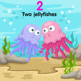 Illustrator of number with two jellyfishes Stock Images