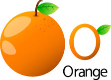 Illustrator o font with orange. Vegetables Stock Image