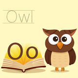 Illustrator of O for Owl bee vocabulary. Illustrator of O for Owl vocabulary stock illustration