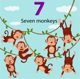 Illustrator Of Number Seven Monkeys Royalty Free Stock Photos