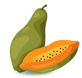 Illustrator of papaya Royalty Free Stock Images