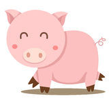 Illustrator of pig cute Stock Image